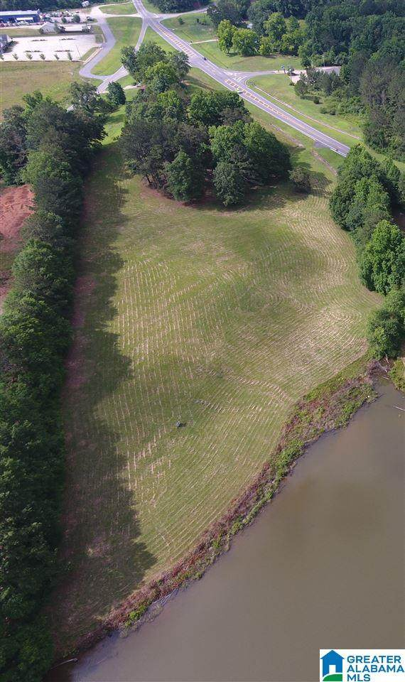 0 Highway 431, Wedowee, AL 36278 (MLS #1281654) :: Josh Vernon Group