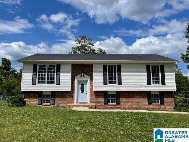 101 Pinehurst Road, Trussville, AL 35173 (MLS #1287370) :: Lux Home Group