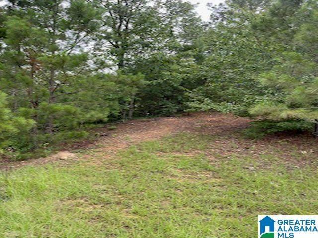 Preserve Trail Lot 231, Sylacauga, AL 35151 (MLS #1288365) :: Sargent McDonald Team