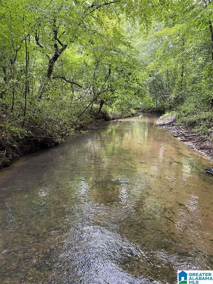 Bama Rock Garden Road - Photo 1