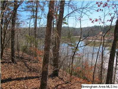Lot 11 Smiley St Lot 11 Aaron S/, Wedowee, AL 36278 (MLS #586848) :: Sargent McDonald Team