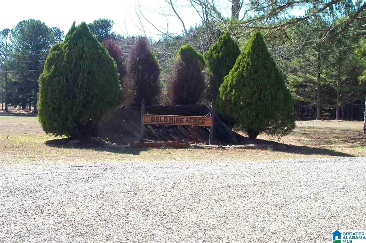 10 Peckerwood Rd - Photo 1