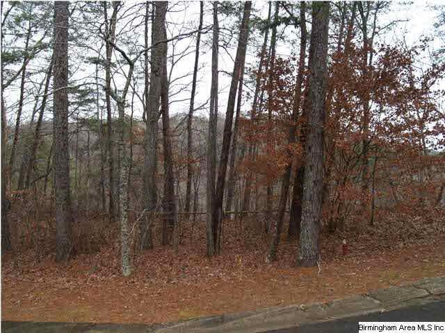 Lot 111 Ridge Dr #111, Blount Springs, AL 35079 (MLS #797646) :: Howard Whatley
