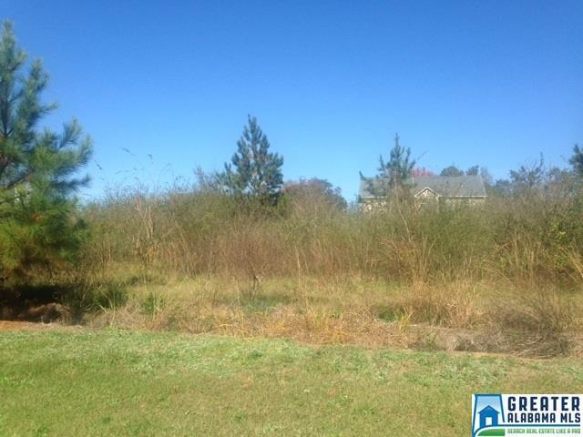 0 Red Oak Ct Lot #9, Lincoln, AL 35096 (MLS #799181) :: Brik Realty