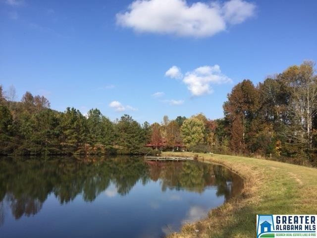 295 Horsley Rd, Ashville, AL 35953 (MLS #800571) :: K|C Realty Team
