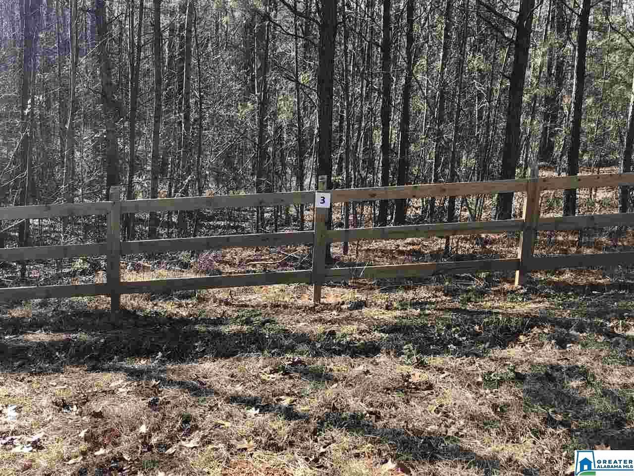 31 Dogwood Dr - Photo 1