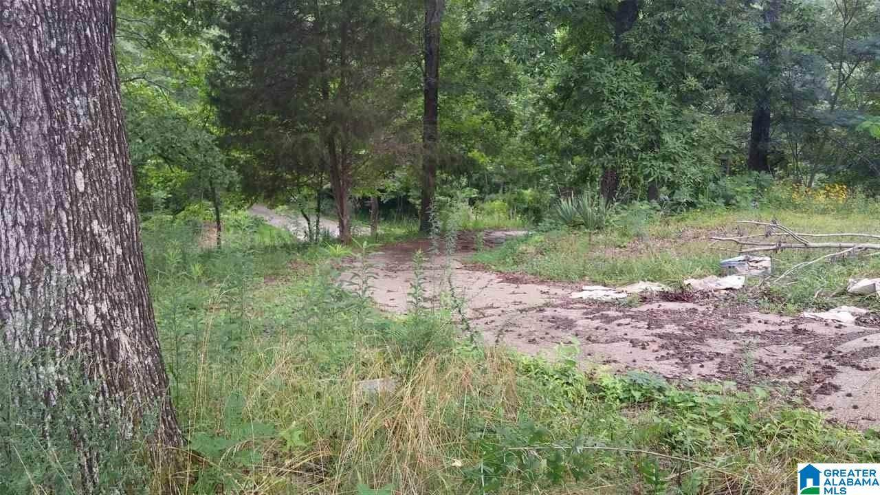 2005 Forest Glen Rd - Photo 1