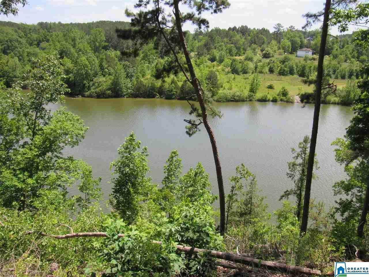8 Rock Creek Co Rd 4312 - Photo 1