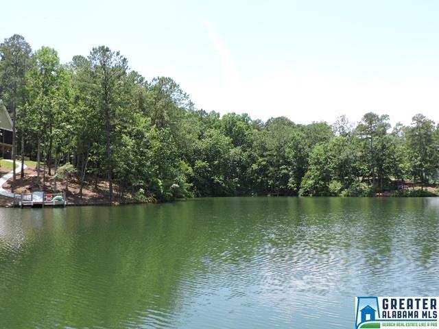 Co Rd 897 #21, Wedowee, AL 36278 (MLS #818952) :: The Mega Agent Real Estate Team at RE/MAX Advantage