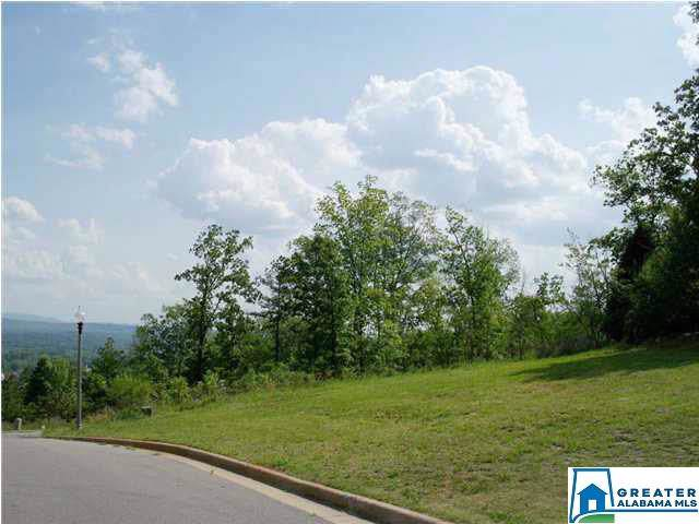 Eagle Pass Way Lot 7 Add 1, Anniston, AL 36207 (MLS #827679) :: Josh Vernon Group