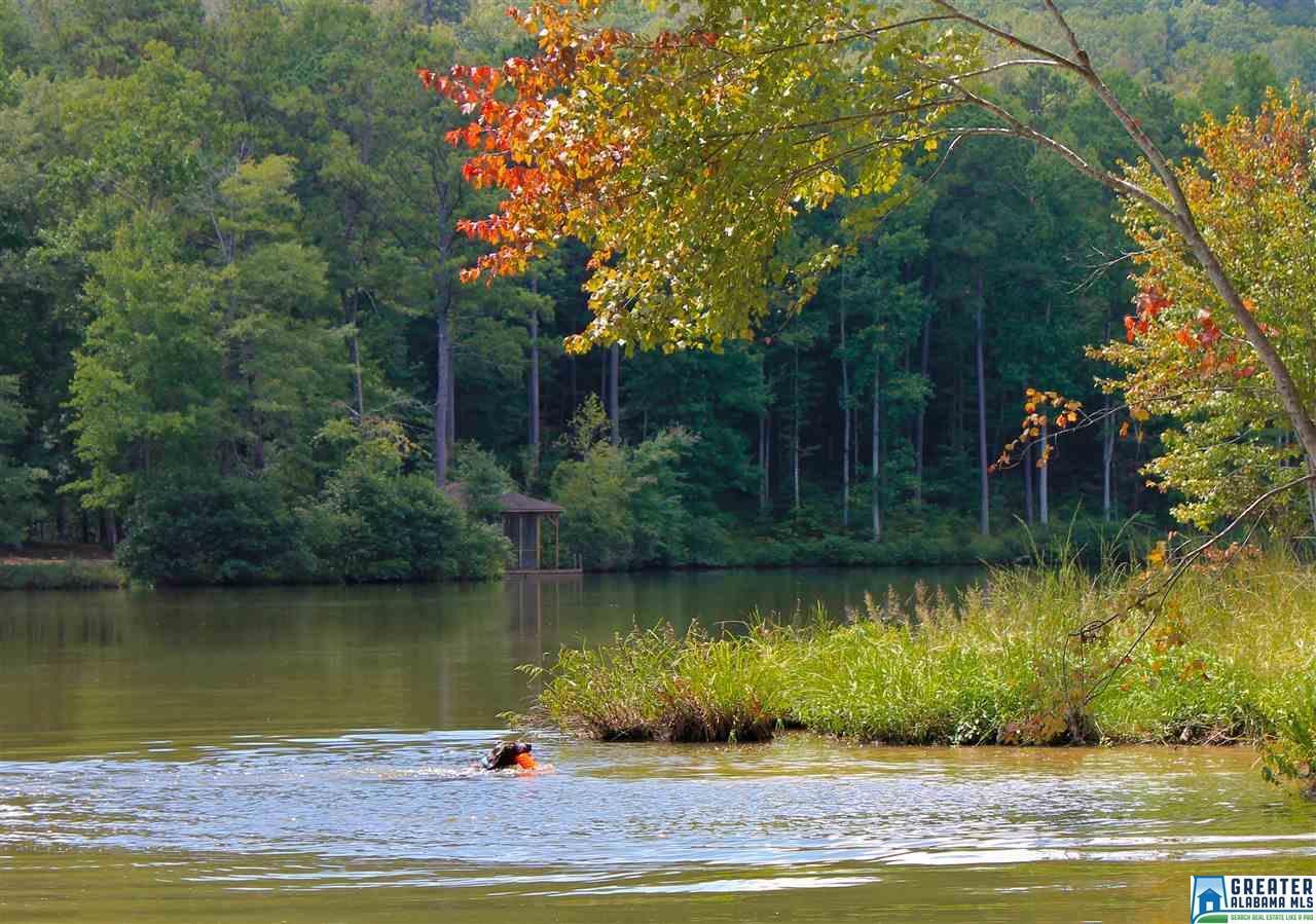 678 Valley Lake Rd - Photo 1