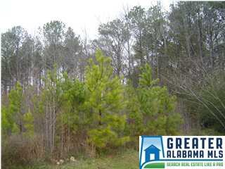 1 Crandall Dr 40 AC, Springville, AL 35146 (MLS #840325) :: Josh Vernon Group