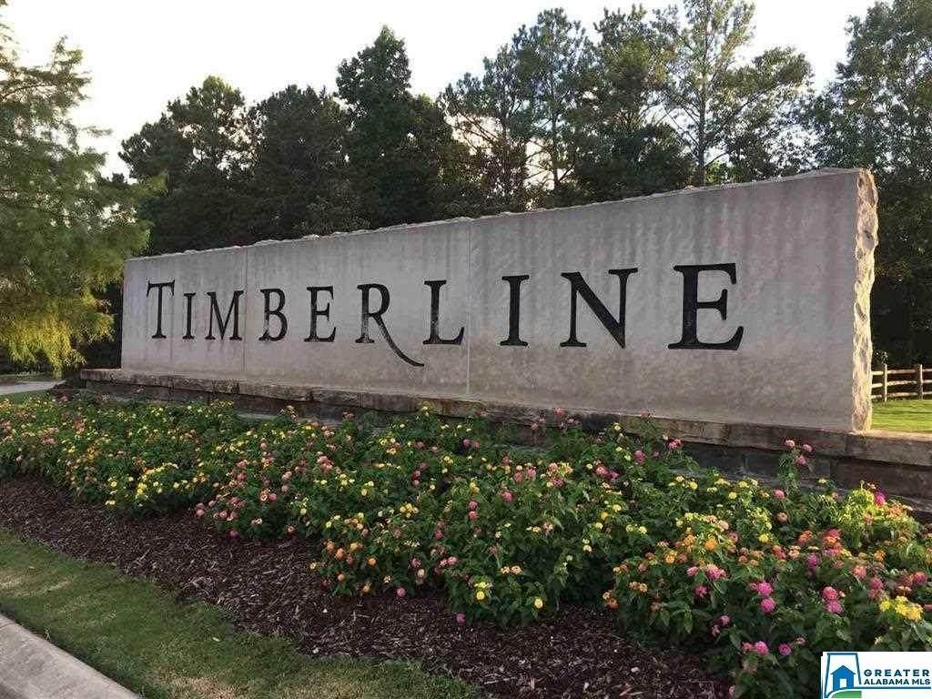 576 Timberline Trl - Photo 1