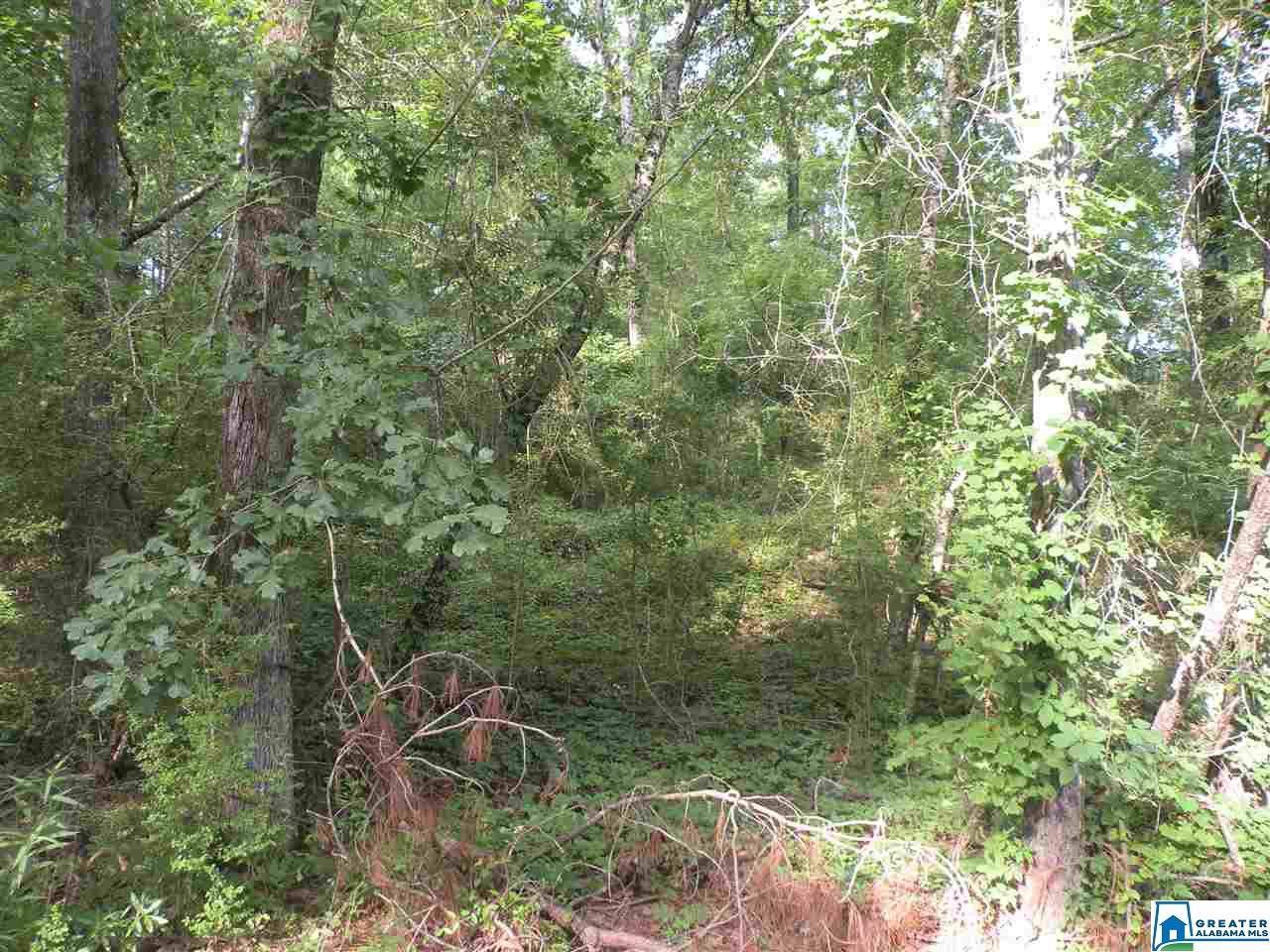 33 Water Oak Ln - Photo 1