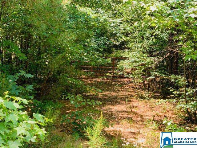 0 Co Rd 2501 - Photo 1