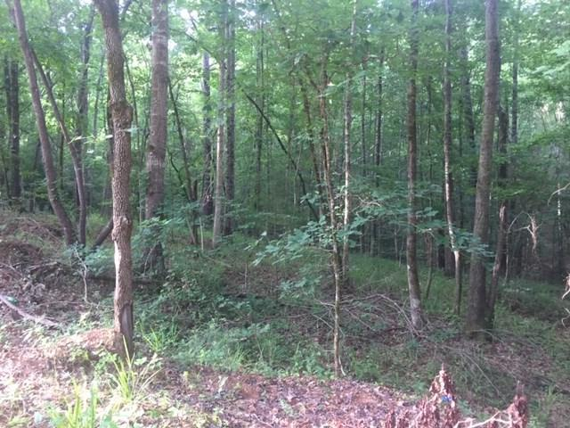 0 Big Y Cove Loop #1, Rockford, AL 35136 (MLS #854350) :: Josh Vernon Group