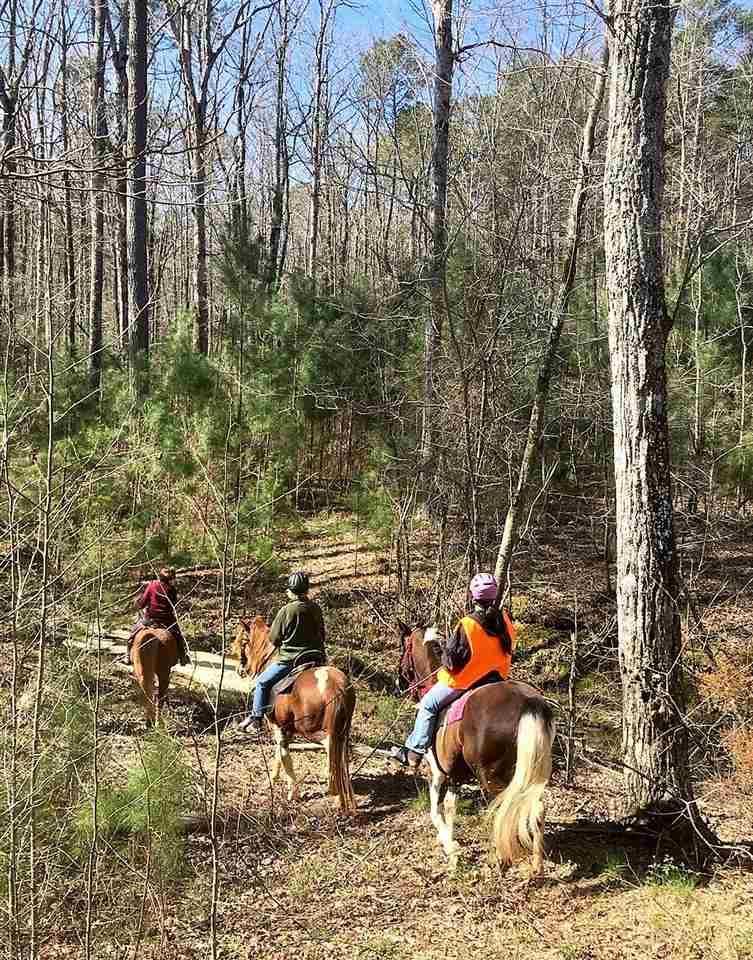7202 Bluegrass Ln - Photo 1