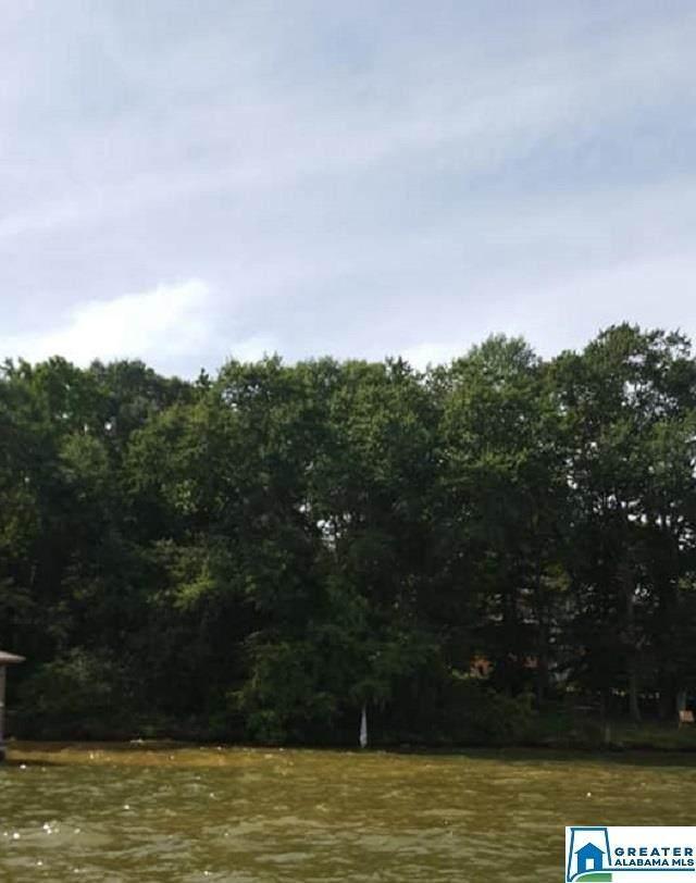 River Oaks Dr - Photo 1