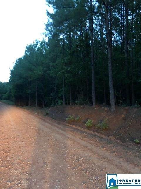 Co Rd 268 38 Ac., Roanoke, AL 36274 (MLS #856238) :: Howard Whatley