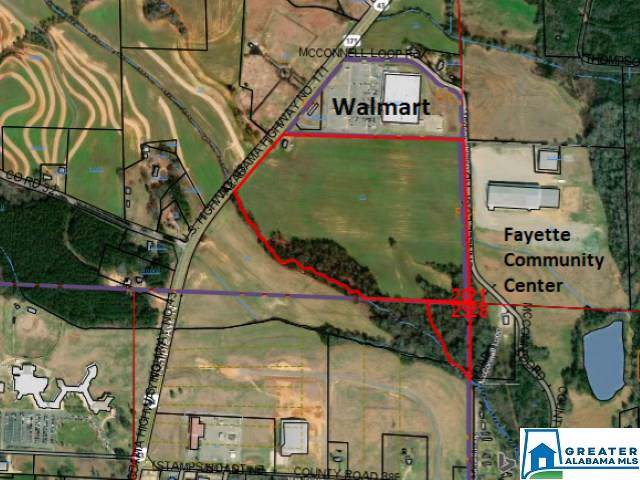 3098 Hwy 171, Fayette, AL 35555 (MLS #857672) :: Bentley Drozdowicz Group