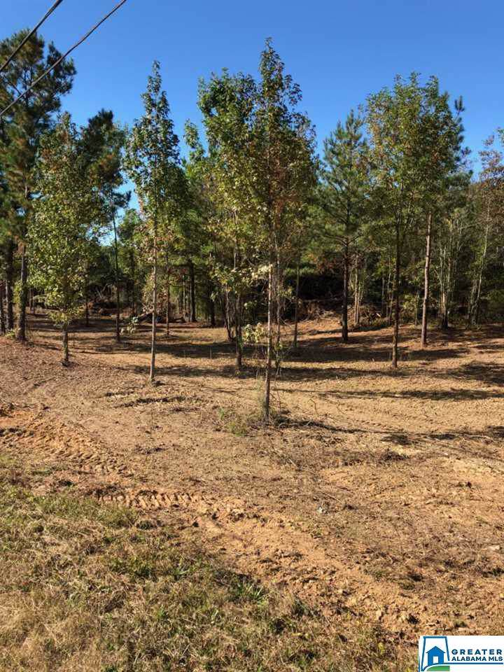 Lot 3 Old Hwy 280 - Photo 1
