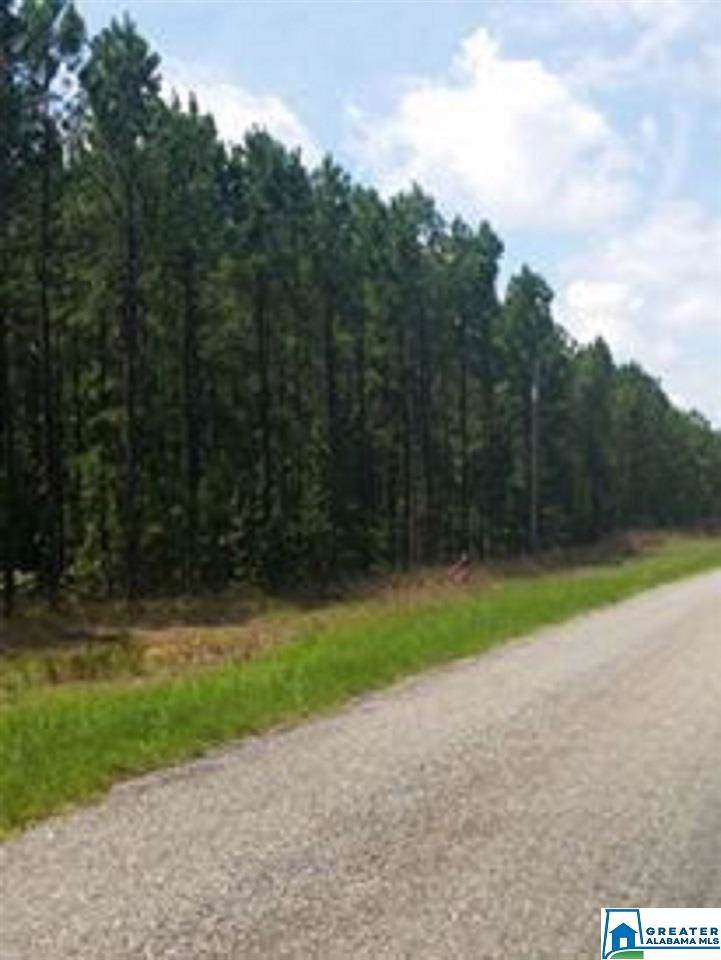 Lot 7 Country Club Rd - Photo 1
