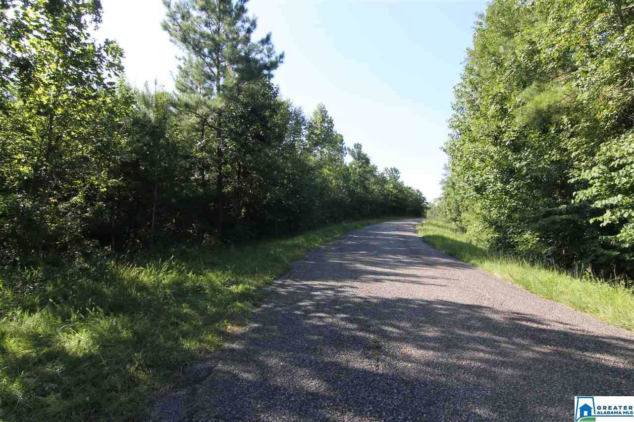 9200 Co Rd 25 - Photo 1