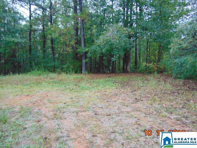 3 Co Rd 69 - Photo 1