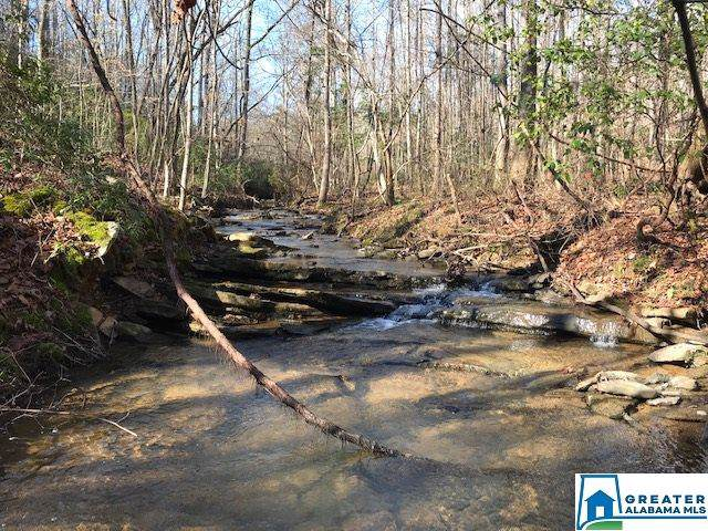 0 Sunset Dr 72 Acres, Pell City, AL 35125 (MLS #870431) :: LocAL Realty