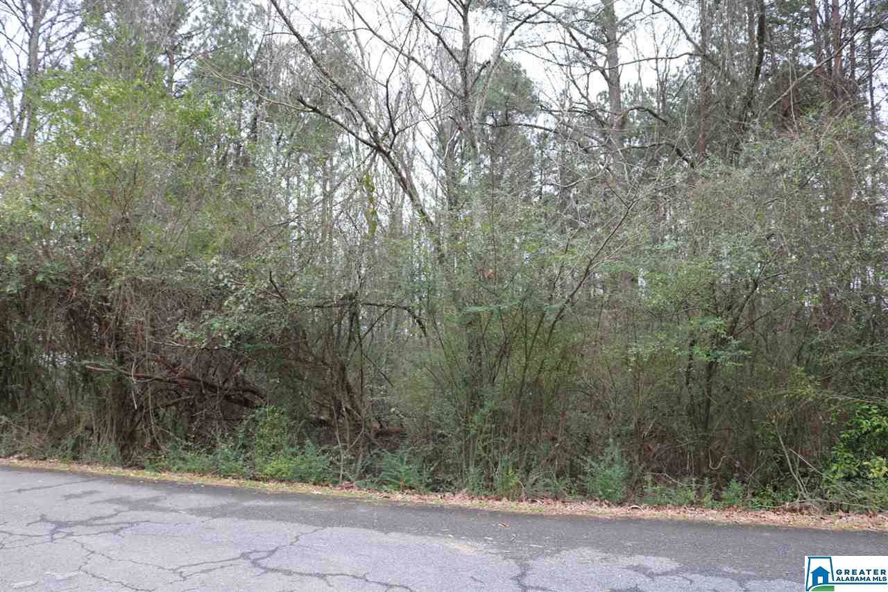 0 Charles Collier Ln - Photo 1