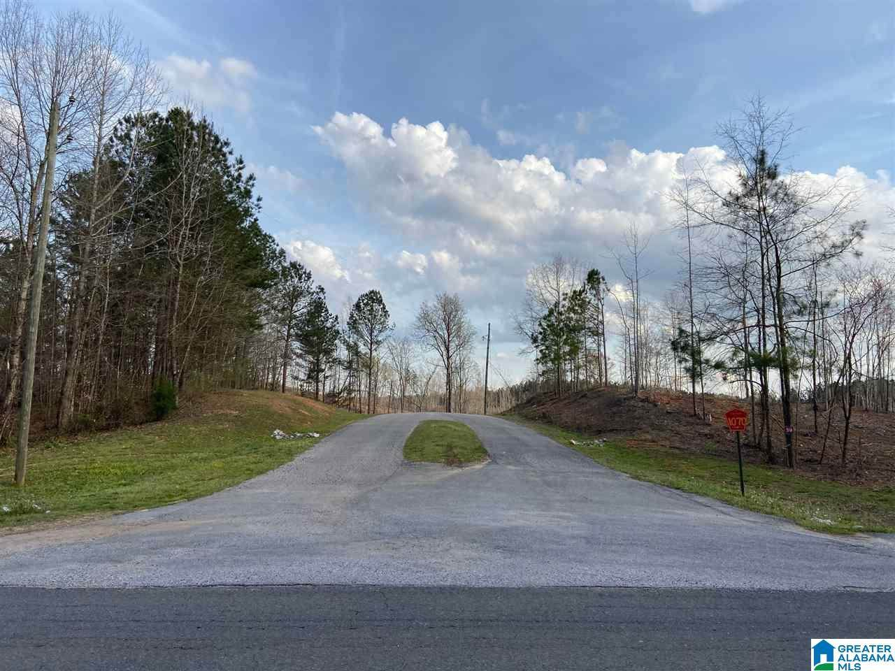 337 Co Rd 1070 - Photo 1