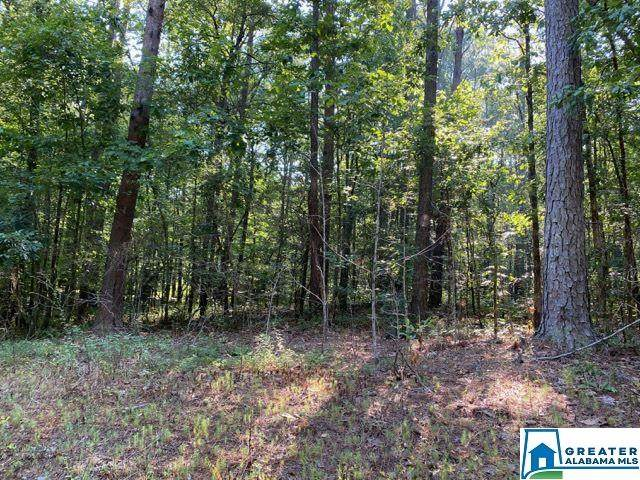 Muriel Dr Lot #19, Mccalla, AL 35490 (MLS #891550) :: LIST Birmingham