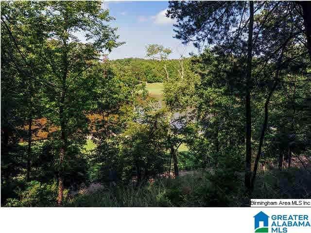4298 Kings Mountain Ridge #756, Vestavia Hills, AL 35242 (MLS #898151) :: LIST Birmingham