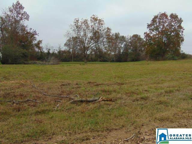 805 Co Rd 342 - Photo 1