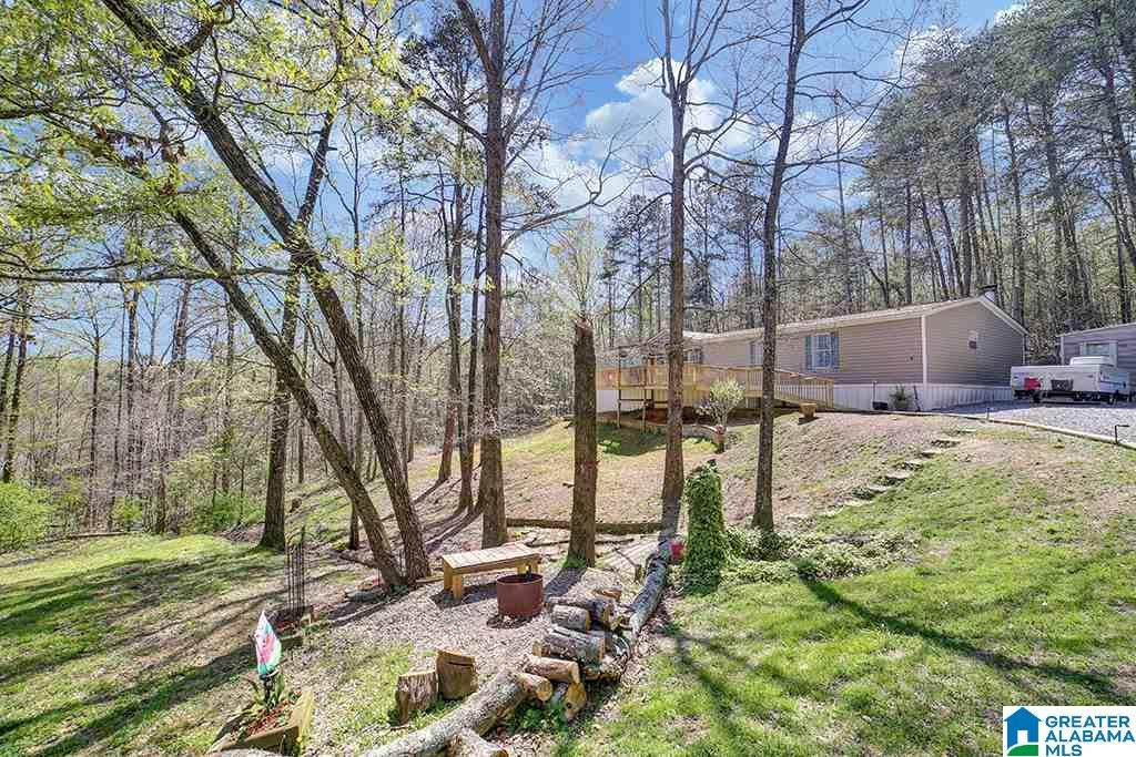 43 Moccasin Trail - Photo 1
