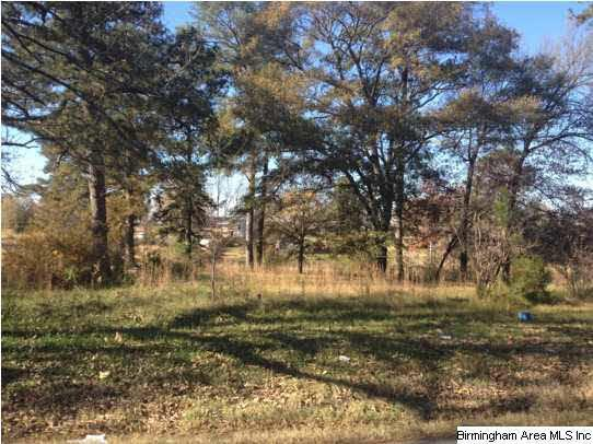 1412 Eastern Valley Rd 1.3ACRES, Bessemer, AL 35022 (MLS #548740) :: JWRE Powered by JPAR Coast & County
