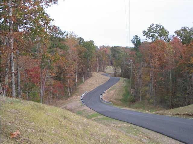 2015 Blue Ridge Ln #11, Odenville, AL 35120 (MLS #563768) :: Josh Vernon Group