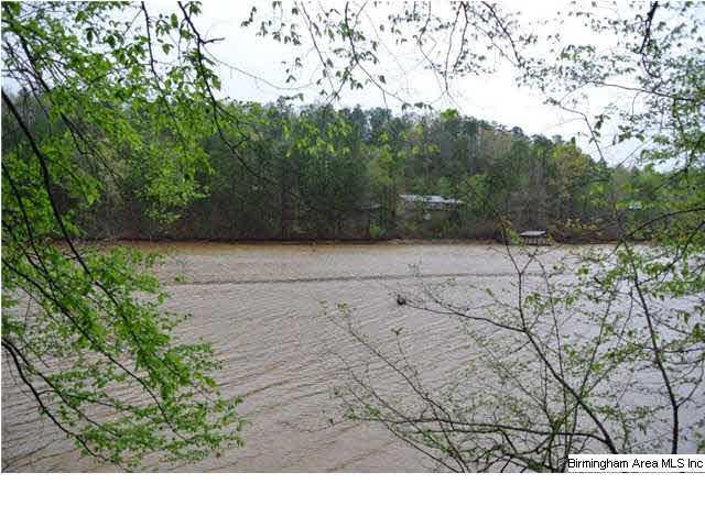 Lot 6 Waters Dr Lot 6, Wedowee, AL 36278 (MLS #594751) :: The Mega Agent Real Estate Team at RE/MAX Advantage