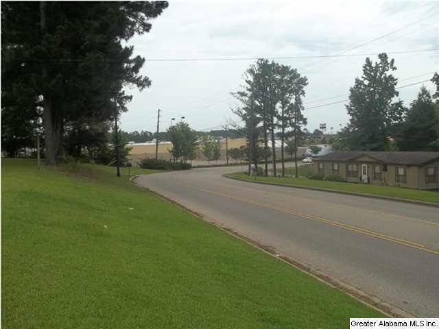 105 Willow Ln, GREENVILLE, AL 36037 (MLS #602160) :: LIST Birmingham
