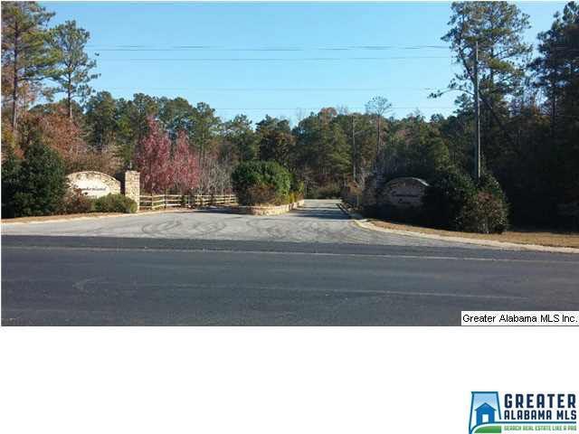 Haynes Drive 34 LOTS, Vincent, AL 35178 (MLS #615766) :: The Natasha OKonski Team