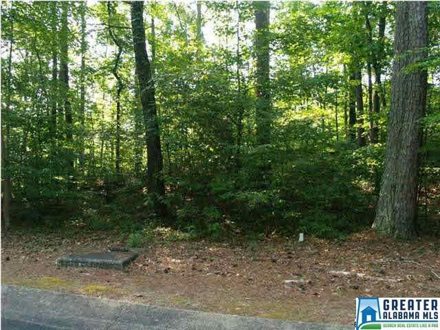 Lot 113 Ridge Dr #113, Blount Springs, AL 35180 (MLS #741431) :: Howard Whatley