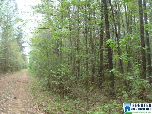 00 Blackberry Ridge Road - Photo 1