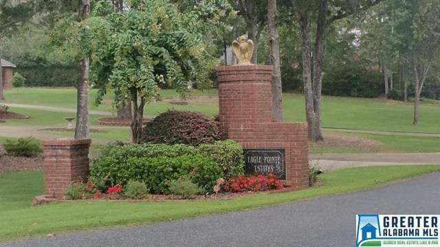120 Hunter Ridge Ln #0, Pell City, AL 35128 (MLS #760333) :: Sargent McDonald Team
