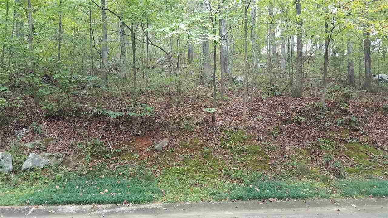 Lot 15 Hollow Road - Photo 1