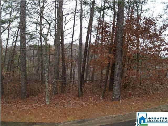 Lot 111 Ridge Dr #111, Blount Springs, AL 35079 (MLS #797646) :: Krch Realty