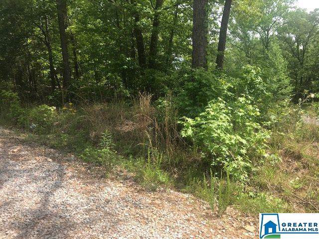 0 Old Shocco Rd - Photo 1