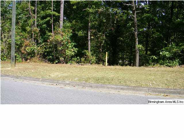 Lot 129 Avery Dr - Photo 1