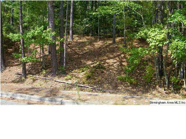 Lot 112 Avery Dr #112, Anniston, AL 36205 (MLS #479536) :: The Mega Agent Real Estate Team at RE/MAX Advantage