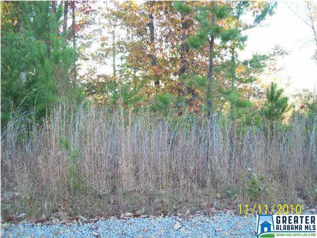 Lot 22 Wylie Summit Lot 22, Steele, AL 35987 (MLS #502948) :: Gusty Gulas Group