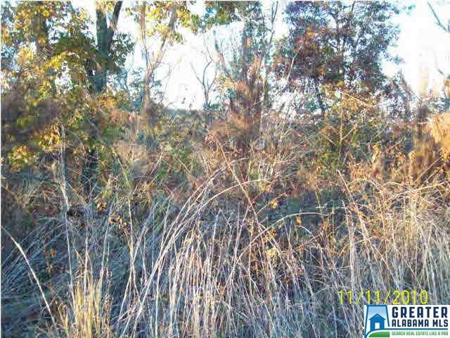 Lot 23 Wylie Summit Lot 23, Steele, AL 35987 (MLS #502952) :: Gusty Gulas Group